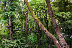 Adventure climbing high wire park Royalty Free Stock Photo