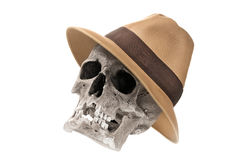 Adventure concept. Human skull with fedora hat isolated on white. Royalty Free Stock Photos