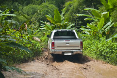 Adventure in the jungle. Pickup-truck excursion in the tropical rainforest Stock Images