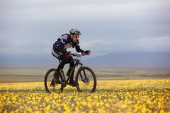 Adventure mountain bike competition Royalty Free Stock Images