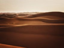 Adventure in the Sahara Desert Royalty Free Stock Photos