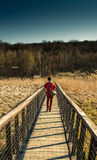 Adventure Seeker. Man on a bridge walking towards a dense forest on a sunny spring day Stock Photography