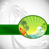 Adventure Surfing in Tropical Island Stock Image