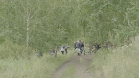 Adventure, travel, tourism, hike and people concept - group of smiling friends walking with backpacks in woods.  stock video footage
