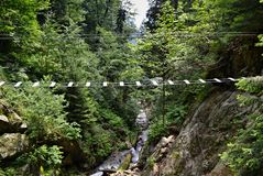 Adventure via ferrata hiking trail with a rope bridge over a gorge with stream and green plants stock photography