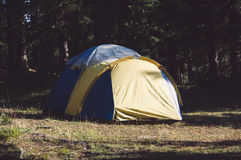 Adventures Camping and tent under the pine forest near water. Outdoor in morning and sunset pine forest park Stock Photo
