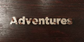 Adventures - grungy wooden headline on Maple  - 3D rendered royalty free stock image Royalty Free Stock Images