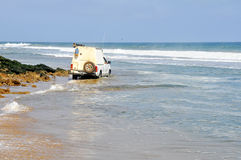 Adventurous Driving Along the Beach Royalty Free Stock Photo