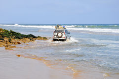 Adventurous Driving Along the Beach Royalty Free Stock Image