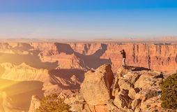 Adventurous man taking a photo at Grand Canyon bef. Adventurous man taking a photo over Grand Canyon before sunset Stock Photo