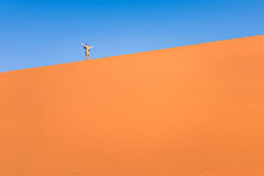 Adventurous man traveler hiking on sand dune in Namibia Royalty Free Stock Photo