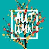 Adversting geometrico di autunno Illustrazione di vettore ENV 10 Manifesto di vendita Autumn Tree e foglie Fotografia Stock Libera da Diritti
