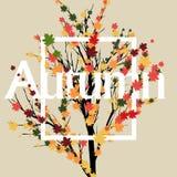 Adversting geometrico di autunno trre e foglie di autunno Illustrazione di vettore ENV 10 Fotografia Stock Libera da Diritti