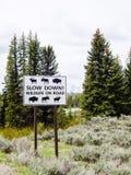 Advertencia de la señal de tráfico de la fauna Foto de archivo libre de regalías
