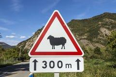 Advertencia de las ovejas de la placa de calle Foto de archivo libre de regalías