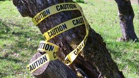 Advertindo para o cuidado, fita amarela, natureza video estoque