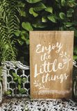 Advertise typography wooden board with plant Royalty Free Stock Photos