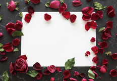 Advertisement Copy Space Card Roses Concept Royalty Free Stock Photo
