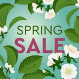 Advertisement about the spring sale on background with beautiful cherry blossom. Vector illustration. stock photography