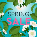 Advertisement about the spring sale on background with beautiful cherry blossom. Vector illustration. stock image
