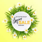 Advertisement about the spring sale on background with daffodil narcissus flowers. Stock Photography