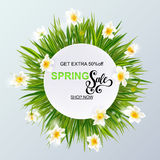 Advertisement about the spring sale on background with grass and daffodil narcissus flowers. Royalty Free Stock Photography