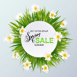 Advertisement about the spring sale on background with grass and daffodil narcissus flowers. Stock Photo