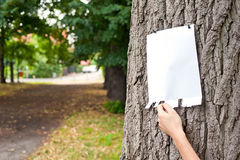 Advertisement on tree Stock Photos