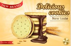 Advertising banner for chocolate sandwich cookies Stock Image