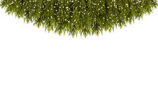 Advertising banner decorated with green fir branches. Christmas Royalty Free Stock Image