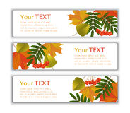Advertising banners with autumn leaves Royalty Free Stock Photography