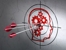 Advertising concept: arrows in Head With Gears Stock Image