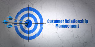 Advertising concept: target and Customer Relationship Management on wall background Royalty Free Stock Photography
