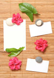 Advertising notes with some flowers. Advertising poster in spa style Royalty Free Stock Images