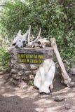 Advirtiendo en el lago Manyara park nacional, Tanzania Imagenes de archivo