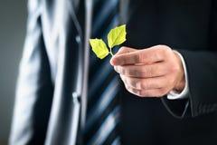 Advogado ou político ambiental com natureza e valores favoráveis ao meio ambiente Homem de negócio no terno que guarda as folhas  imagem de stock royalty free
