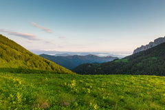 Adygea. Mountain Big Thach. stock footage