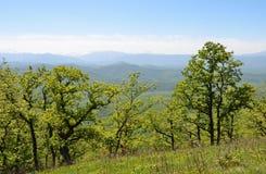 Adygea, paisaje de la montaña en primavera En el fondo del canto caucásico principal Fotos de archivo