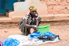 Traditional medicine saleswoman. Stock Images