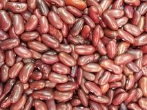 Adzuki bean background Royalty Free Stock Photography