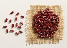 Adzuki Bean legume. Close up of grains spreaded over white table. Vigna angularis is scientific name of Adzuki Bean legume. Also known as Azuki and Japanese Bean Royalty Free Stock Images