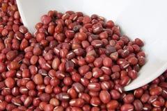 Adzuki beans Stock Images
