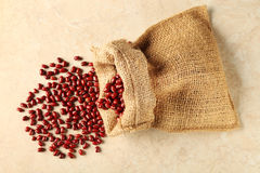 Adzuki beans Royalty Free Stock Images