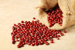 Adzuki beans Royalty Free Stock Image