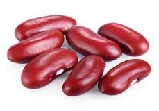 Adzuki del fagiolo rosso Immagini Stock