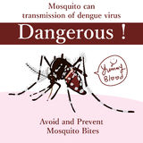 Aedes Albopictus dangerous card Royalty Free Stock Image