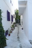 Aegean area - Tenedos island, art, at the shops, houses Stock Photo