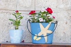 Aegean blomkrukar Fotografering för Bildbyråer