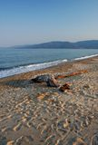 Aegean sea beach. In evening Royalty Free Stock Photo