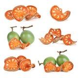 Aegle-marmelos und trockenes bael tragen auf Weiß Früchte Lizenzfreies Stockfoto